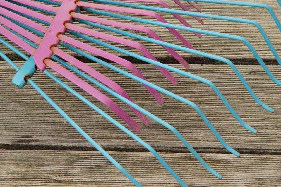 庭の掃除にあると便利な道具 たち