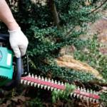 庭木の剪定・・電動機械何を使えば女性でもできる