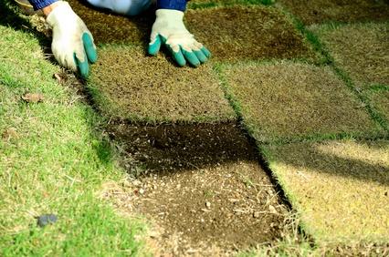 芝生の張り方と時期は