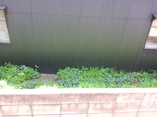 庭に雑草対策で固まる土使いたい寿命や費用は