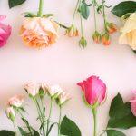 バラの花束を挿し木にする方法