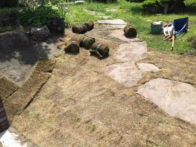 芝生の購入はどこがいいの価格は面積との割合は