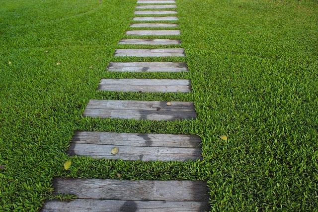 芝の種類は各芝の特徴やポイントは