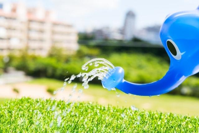 芝生の肥料にメネデールその使い方は