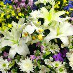 仏壇に飾る花は何がいい?その意味とは